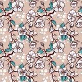 äppleträd eller sakura blommabakgrund Royaltyfria Foton
