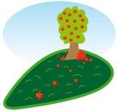 äppletree vektor illustrationer
