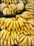 Är bananer bra för dig som är daglig? Royaltyfria Foton