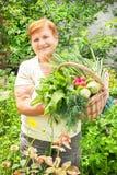 Är den aktiva höga kvinnan för trädgårdsmästaren den hållande korgen av nytt picke Royaltyfri Foto
