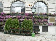 Är den bohemiska fjärdedelen för blomma- och buskeväxtskärm av Skadarlija Arkivfoto