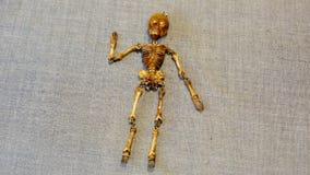 Är det mänskliga skelettet på bakgrunden Royaltyfri Fotografi