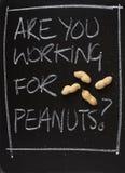 Är du som arbetar för jordnötter? arkivfoton