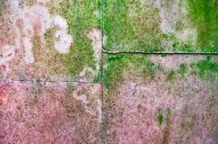 Är gamla väggplattor för bakgrund med rosa färgmarmortextur den täckt gröna formen och mossa Royaltyfri Bild
