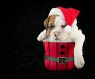Är jul över ännu? Royaltyfria Foton