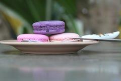 Är mång- färgrikt för franska makron läckert Royaltyfri Foto