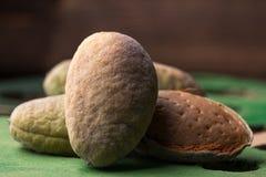 Är nya gröna mandlar i peelen nya från trädet Mandlar på en svart bakgrund Makro ny skörd Arkivfoto