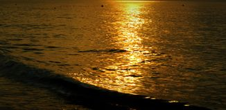 Är reflekterande yttersida för havsaftonsolljus guld- Royaltyfria Foton