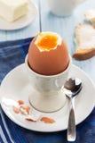 Ärgern Sie in einem Eierbecher mit Toast und Butter Lizenzfreies Stockfoto
