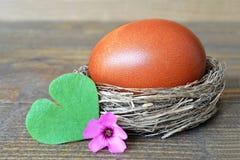 Ärgern Sie im Nest, in der Frühlingsblume und Herz im geformten Blatt Lizenzfreies Stockbild