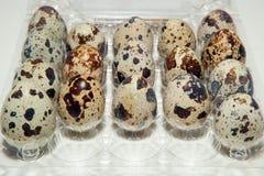 Ärgern Sie, Wachteleier, Plastikverpackung- der Eier, geschmackvolles und gesundeslebensmittel stockfotos