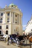 Ärkeängel michael för Wien Österrike hofburgvinge Fotografering för Bildbyråer