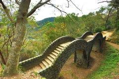 Ärke- bro bland dalen med trappa Fotografering för Bildbyråer