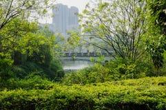 Ärke- bro i grönskande stad av den soliga vårmorgonen Fotografering för Bildbyråer