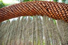Ärke- bruna blomkrukor Arkivfoton