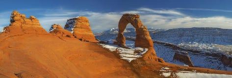 ärke- fin panorama Arkivbild