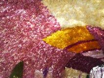 Ärke- orkidé Arkivfoton
