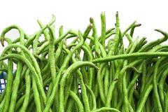 Ärta böna, ko som är lång, mat, sunt som är grön, royaltyfria bilder