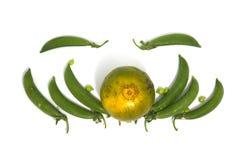 Ärtor och apelsin Royaltyfri Bild