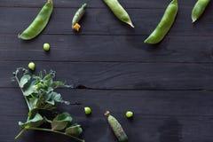 Ärtor och gurkor Royaltyfria Foton