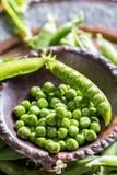 Ärtor white för fröskida för ärtor för bakgrundskulor grön Nya hemlagade ärtor Royaltyfri Fotografi