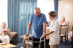 Ärztin, die den älteren Mann geht mit Wanderer unterstützt lizenzfreie stockbilder