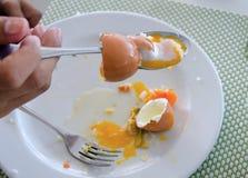 Äta av det mjuka kokta ägget i maträtt Royaltyfri Fotografi