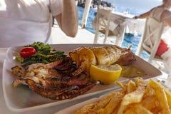 Äta den grillade calamaritioarmade bläckfisken i ett havs- restautant vid kostnaden i den Santorini Oia Amoudi fjärden royaltyfri foto