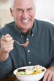 äta den sunda manmålpensionären royaltyfri bild