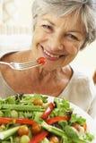 äta den sunda salladpensionärkvinnan Royaltyfri Bild