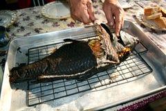 Äta fiskgallret fotografering för bildbyråer