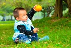 Äta frukt är som bidrar till till baby'sens tillväxt Royaltyfri Fotografi