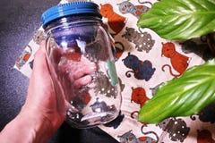 Äta lunch asken för mat, smörgåsar och mellanmål Passande för arbete, lopp och fotvandradet fria arkivfoton