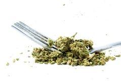 Äta medicinsk och fritids- drogbransch för marijuana, i Amerika Royaltyfri Bild