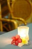 Äta middag lampan Royaltyfria Foton