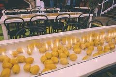 Äta middag område för citrondekor royaltyfria bilder