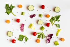 Äta modellen med rå ingredienser av sallad, grönsallatsidor, gurkor, röda tomater, morötter, selleri och frö Royaltyfri Bild