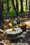 Äta på campingplatsen Royaltyfri Bild