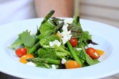 äta sund sallad Fotografering för Bildbyråer