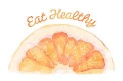 Äta sunt - grapefrukten Royaltyfri Illustrationer