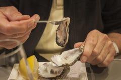 Äta upp en ny ostron, slut arkivbild