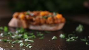 Äta Zacusca - rumänsk grönsakspridning stock video