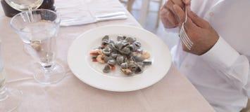 Äter den rå orecchietteräkan för mat Fotografering för Bildbyråer