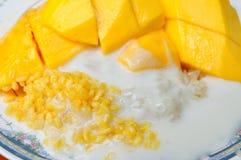 Äter den tropiska efterrätten för thailändsk stil, limaktiga ris med mango Arkivbilder