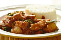 Äter kryddig uppståndelse stekt grillad grisköttcurry med örten par med ris på maträtt royaltyfri fotografi