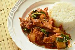 Äter kryddig uppståndelse stekt grillad grisköttcurry med örten par med ris på plattan Arkivbilder