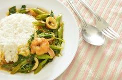 Äter kryddig uppståndelse stekt räka- och tioarmad bläckfiskcurry par med ris Arkivbild