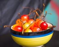 Äter smakliga sunda dagliga mellanmål för körsbärsröd fruktmat Royaltyfria Foton