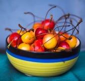 Äter smakliga sunda dagliga mellanmål för körsbärsröd fruktmat Arkivbilder