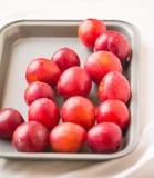 Äter smakliga sunda dagliga mellanmål för plommonfruktmat Arkivfoto